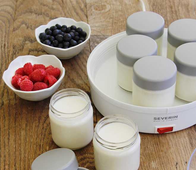 yogurtera severin